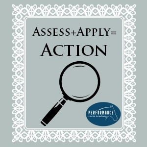 Apply & Assess = Action