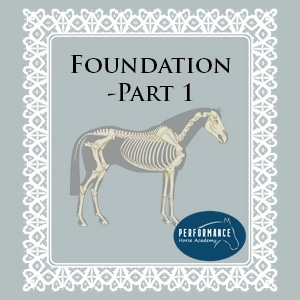 Foundations 1 – Posture & Form