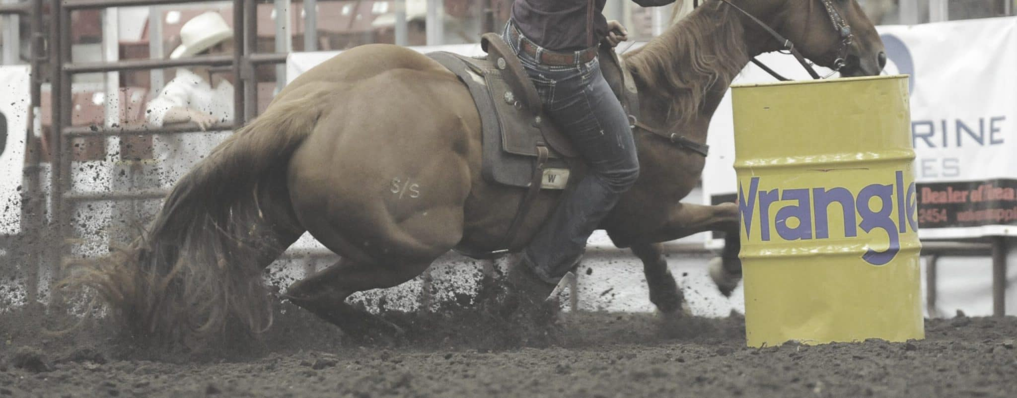 The Performance Horse - BarrelRacingCover-scaled.jpg