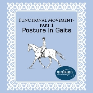 Functional Movement – Part 1 – Posture in Gaits