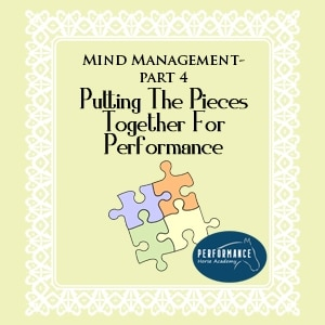 Mind Management – Part 4 – Putting the Pieces Together for a Performance